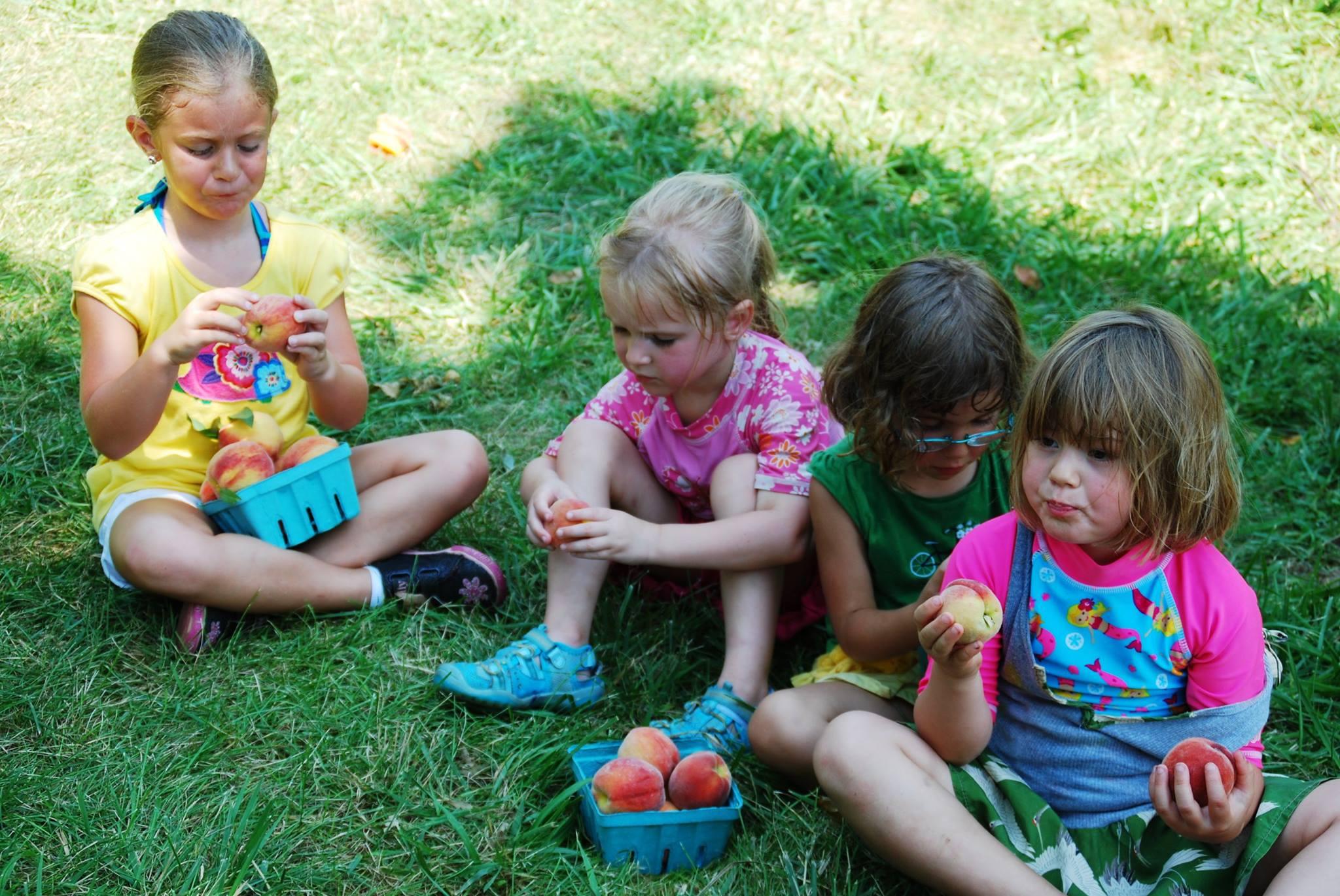 Alstede Farms Fall Family Fun Days