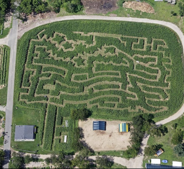 Yuggler Amazing Maize Maze At Queens County Farm Museum