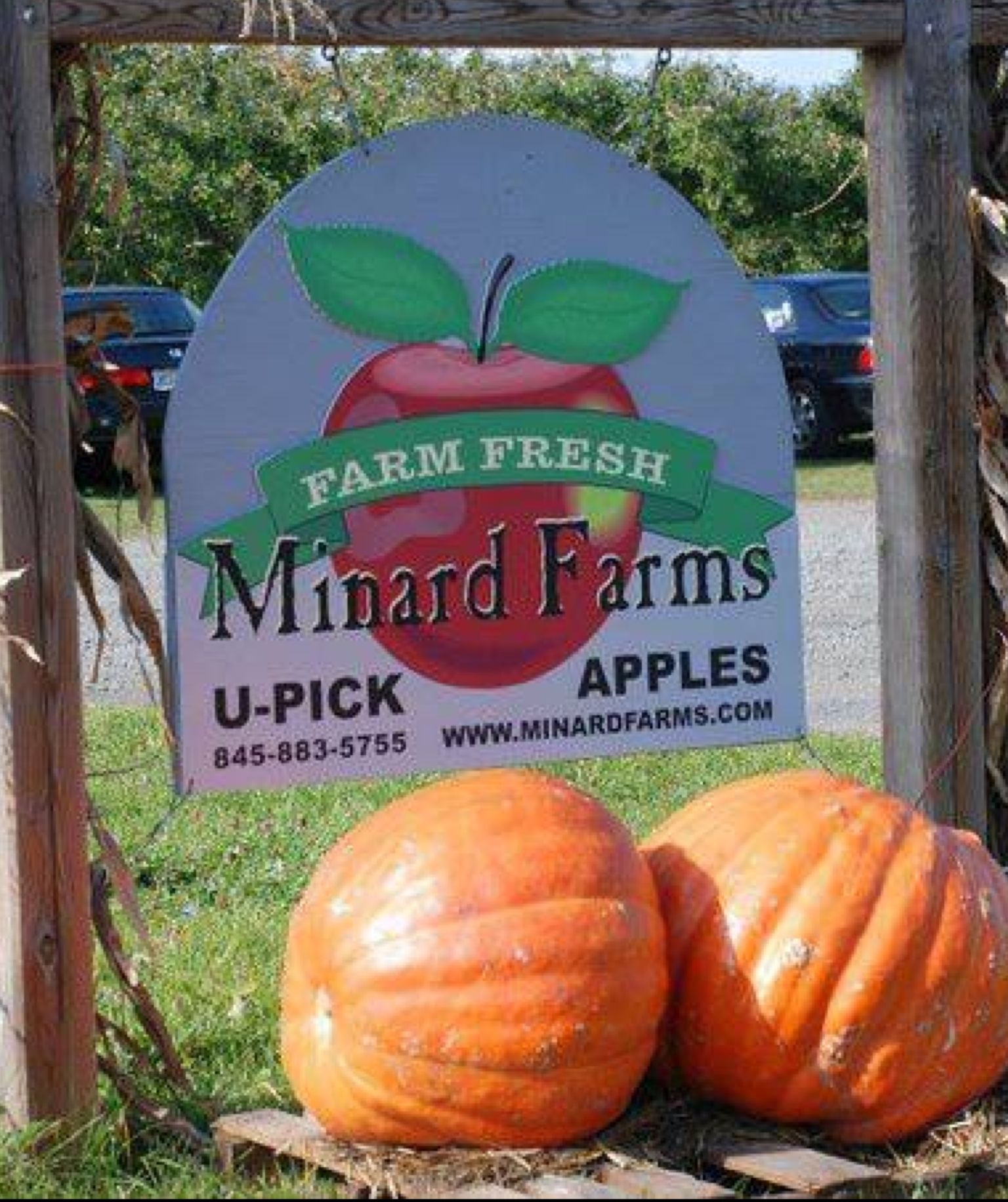 Minard Farms