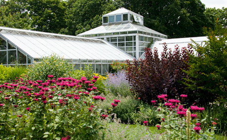 Merveilleux Snug Harbor Botanical Garden